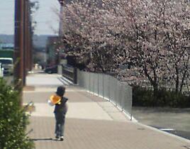 image/kitaoka-2006-04-06T23:54:10-2.jpg