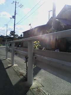 image/kitaoka-2005-12-08T11:50:55-1.jpg
