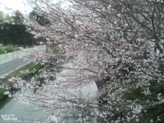 image/kitaoka-2006-04-04T14:19:15-1.jpg