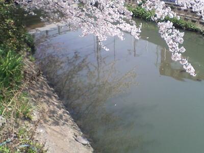 image/kitaoka-2006-04-07T23:09:45-2.jpg