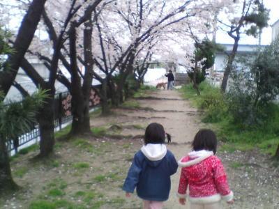image/kitaoka-2006-04-09T10:32:04-1.jpg