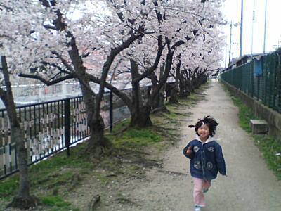 image/kitaoka-2006-04-09T10:32:05-3.jpg