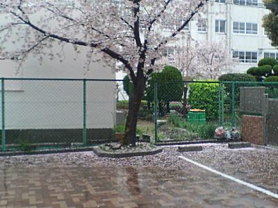 image/kitaoka-2006-04-11T10:04:41-1.jpg