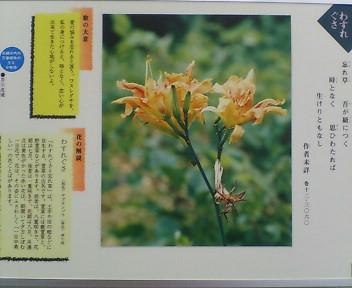 image/kitaoka-2006-05-01T00:21:05-8.jpg