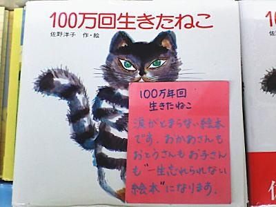 20061022155155.jpg