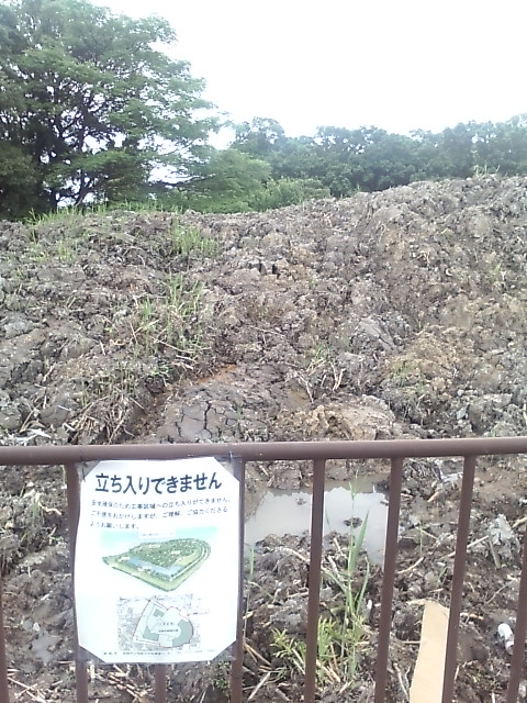 今城塚古墳西側(氷室町側)に積まれた泥土が悪臭を放っている